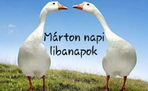 Márton napi Libanapok /10.31-11.14 ig/