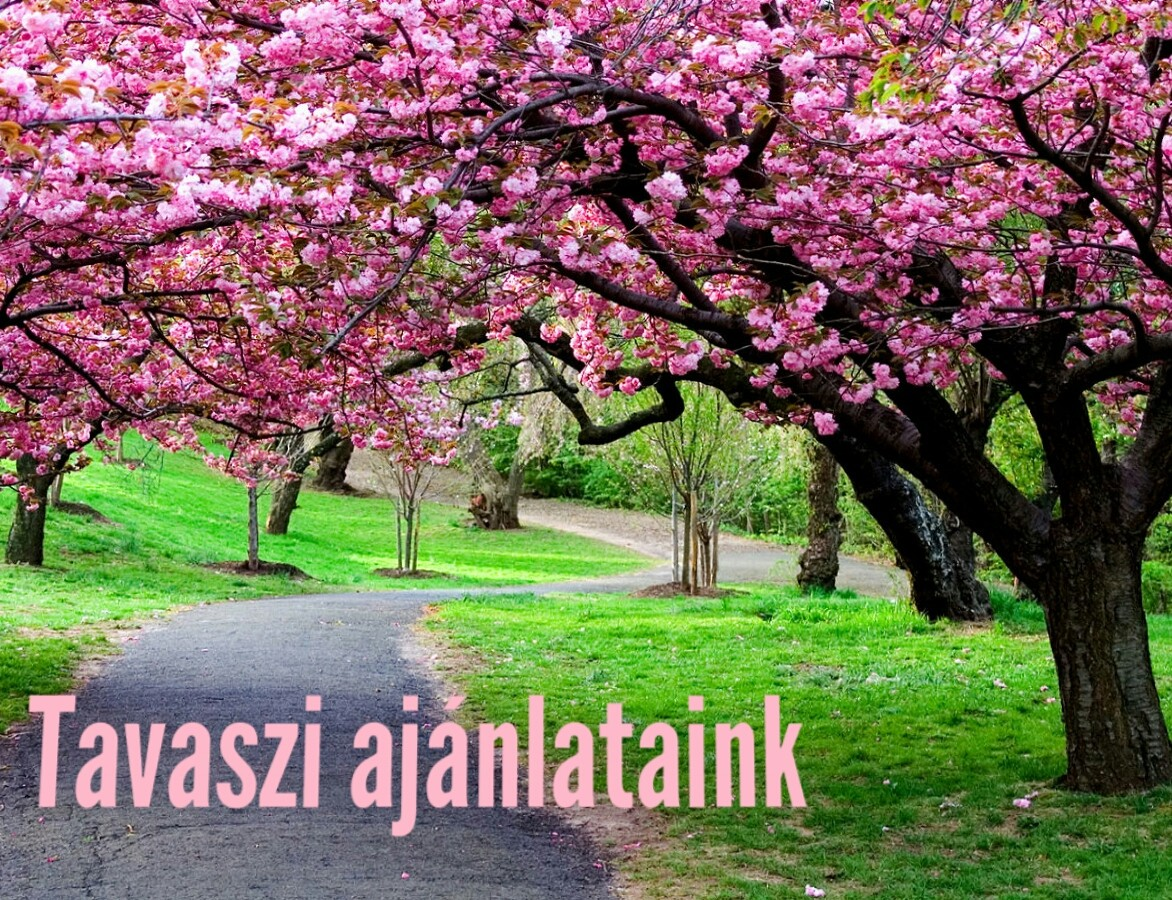 Tavaszi ajánlataink